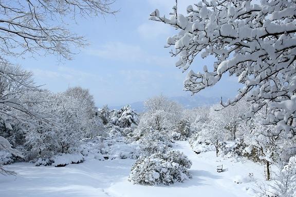 冬_セゾンガーデン