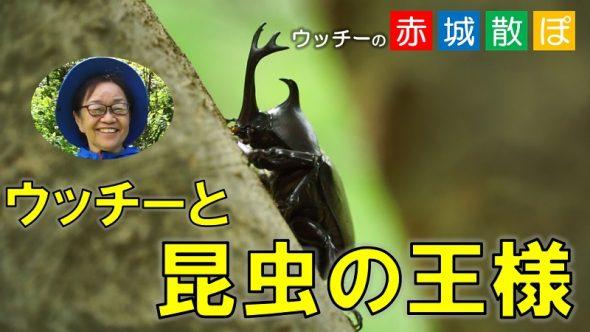 第3 話サムネ(黄色ver)