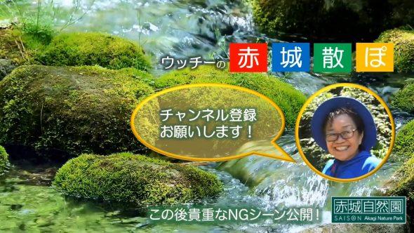赤城散ぽ02