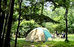 森のキャンプ場 MORIHAKU